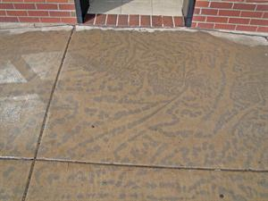 flatwork discoloration